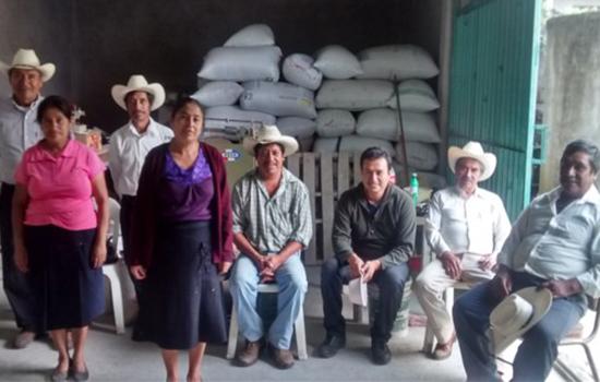 Producteurs de café de la région de Pahuatlan au Mexique