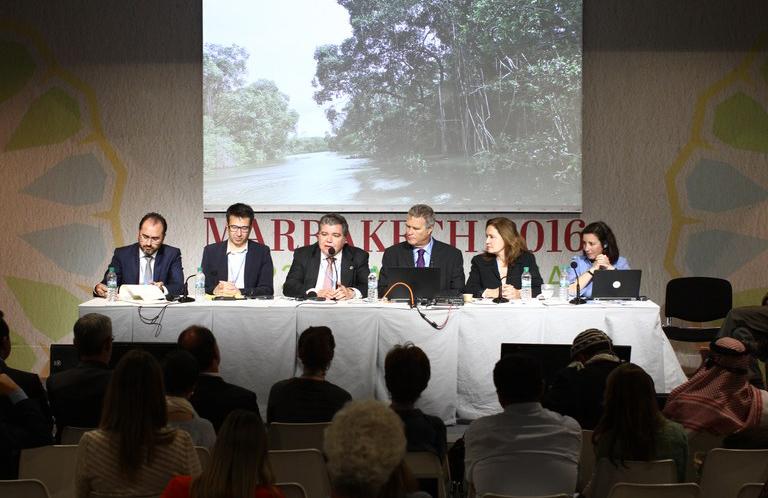 Ministro do Meio Ambiente, Sarney Filho, durante as negociações da COP22