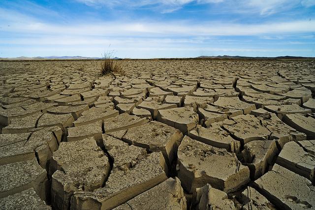 """En Mongolie, à cause de la froideur, il y a un phénomène que nous avons vu deux fois au cours des dix dernières années. Il s'appelle """"dzud"""" où vous avez une sécheresse en été et un hiver extrêmement froid."""