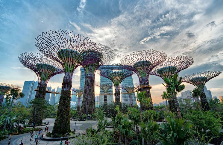 gardens by the bay - City Garden